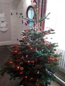 The Hall Tree